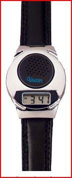 Silver Beauty Talking Watch (Model Sw5)